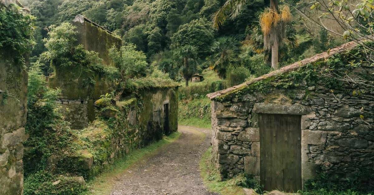 בית נטוש - האיים האזוריים - פורטוגל